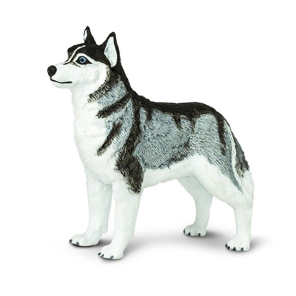 Safari Ltd Siberian Husky-SAF255229-Animal Kingdoms Toy Store