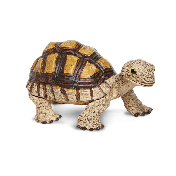 Safari Ltd Tortoise-SAF258629-Animal Kingdoms Toy Store