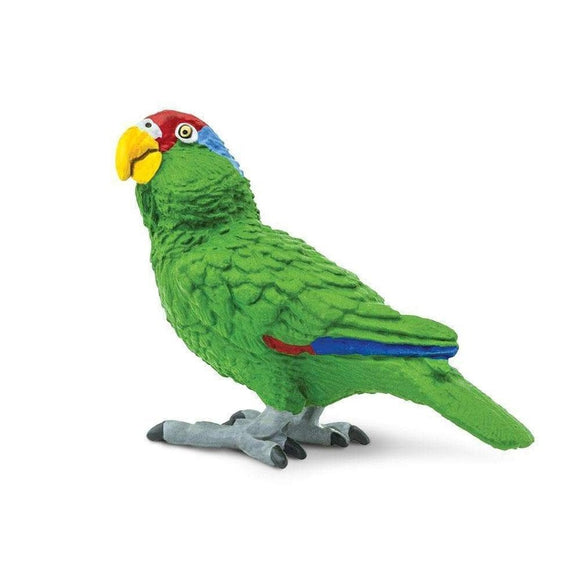 Safari Ltd Green-Cheeked Amazon Parrot - AnimalKingdoms.co.nz