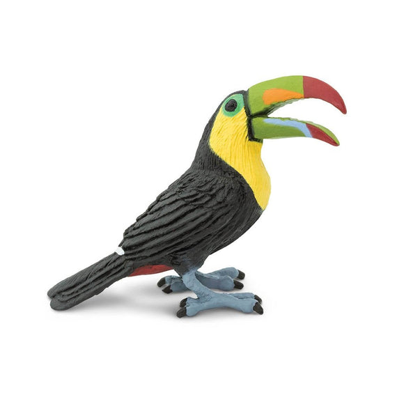 Safari Ltd Toucan - AnimalKingdoms.co.nz