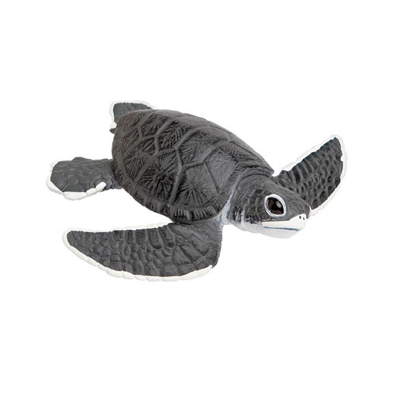 Safari Ltd Sea Turtle Baby-SAF268129-Animal Kingdoms Toy Store