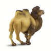 Safari Ltd Bactrian Camel - AnimalKingdoms.co.nz