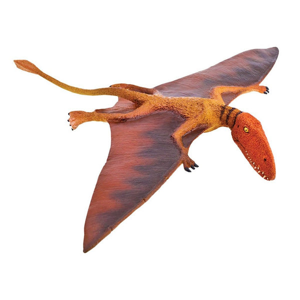 Safari Ltd Dimorphodon - AnimalKingdoms.co.nz