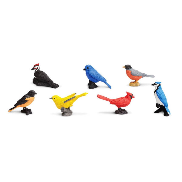 Safari Ltd Backyard Birds Toob-SAF678304-Animal Kingdoms Toy Store