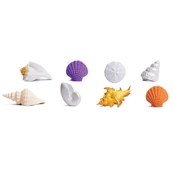 Safari Ltd Seashells Toob-SAF688804-Animal Kingdoms Toy Store