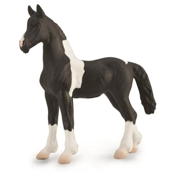CollectA Barok Pinto Foal - AnimalKingdoms.co.nz