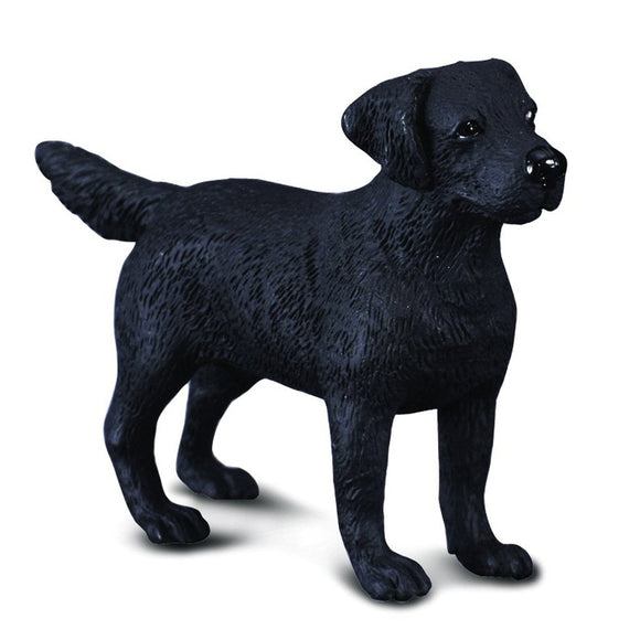CollectA Labrador Retriever Black - AnimalKingdoms.co.nz