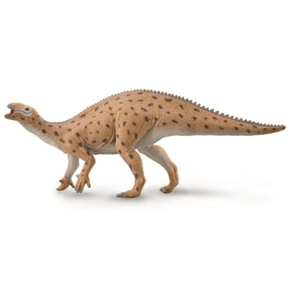 CollectA Fukuisaurus 1:40 Scale-88871-Animal Kingdoms Toy Store