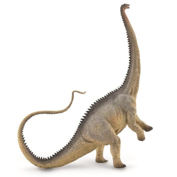 CollectA Diplodocus Grey