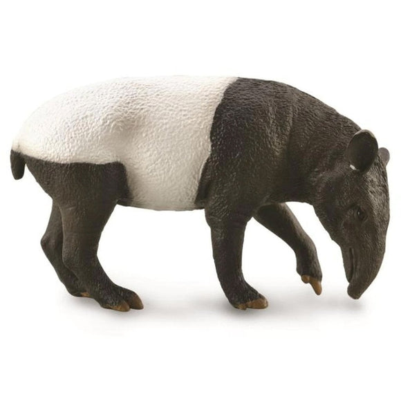 CollectA Malayan Tapir - AnimalKingdoms.co.nz