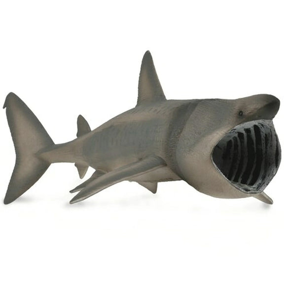 CollectA Basking Shark