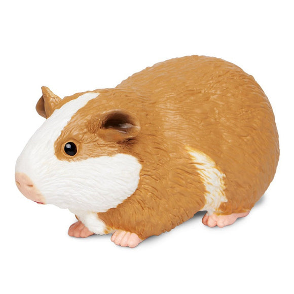 Safari Ltd Guinea Pig-SAF269629-Animal Kingdoms Toy Store