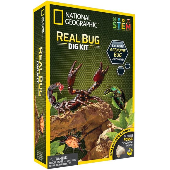 National Geographic - Real Bug Dig Kit-Animal Kingdoms Toy Store