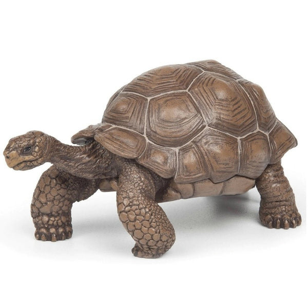 Papo Galapagos Tortoise-50161-Animal Kingdoms Toy Store