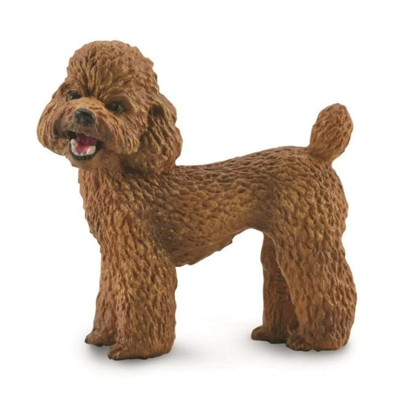CollectA Toy Poodle - AnimalKingdoms.co.nz