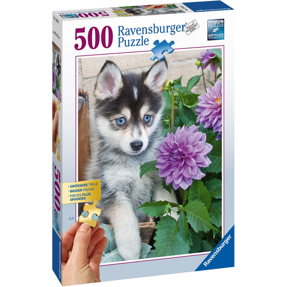 Ravensburger Cute Husky Puzzle 500pc-RB13682-7-Animal Kingdoms Toy Store