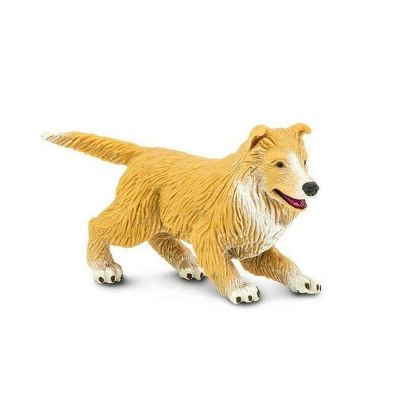 Safari Ltd Collie Puppy-SAF239429-Animal Kingdoms Toy Store