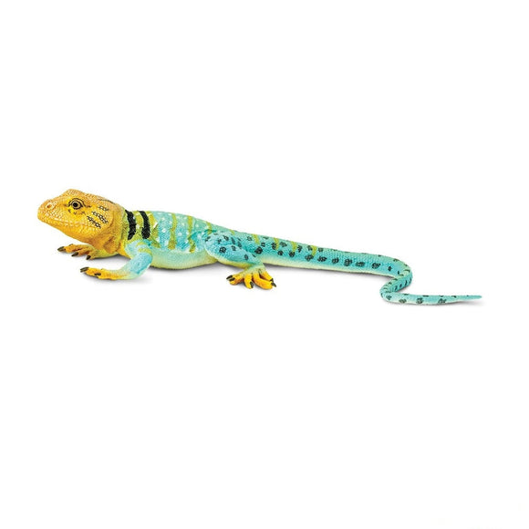 Safari Ltd Collared Lizard-SAF271029-Animal Kingdoms Toy Store