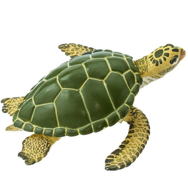 Safari Ltd Green Sea Turtle-SAF274329-Animal Kingdoms Toy Store
