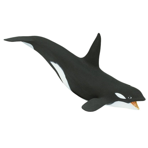Safari Ltd Killer Whale-SAF275129-Animal Kingdoms Toy Store