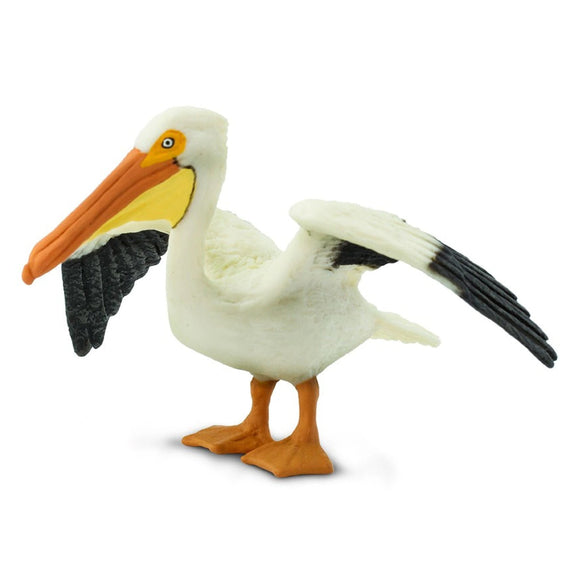 Safari Ltd Pelican-SAF241829-Animal Kingdoms Toy Store