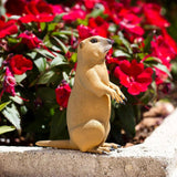 Safari Ltd Prairie Dog - AnimalKingdoms.co.nz