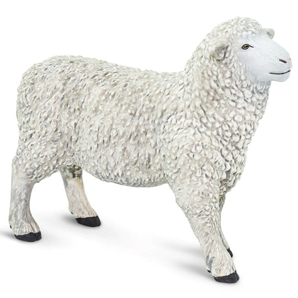 Safari Ltd Sheep