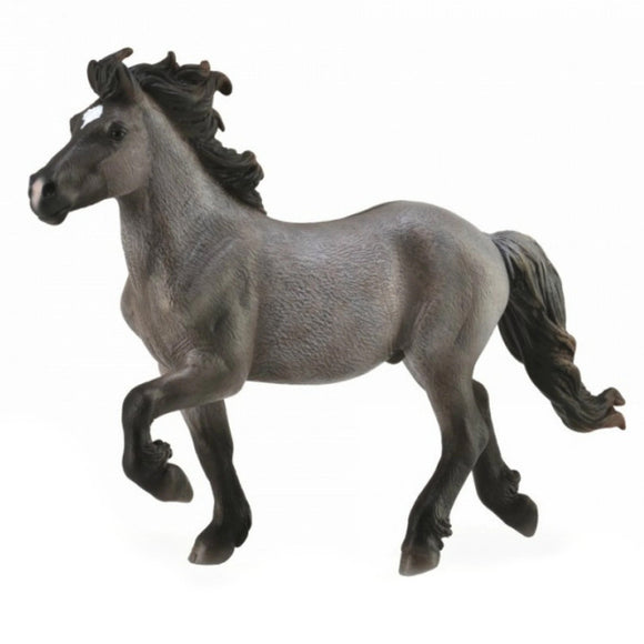 CollectA Icelandic Stallion Blue Dun - AnimalKingdoms.co.nz