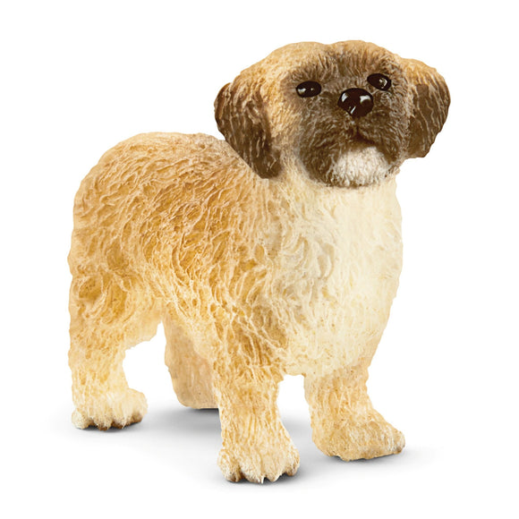 Schleich Exclusive Shih Tzu Malteser Mix-13931-Animal Kingdoms Toy Store