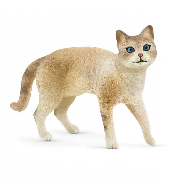 Schleich Exclusive Siamese Cat-13932-Animal Kingdoms Toy Store