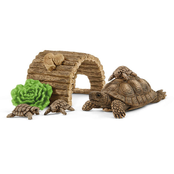 Schleich Tortoise Home-42506-Animal Kingdoms Toy Store