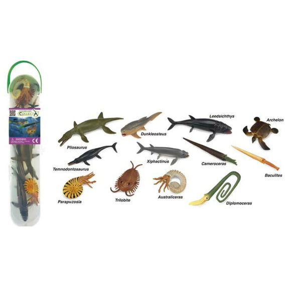 CollectA Mini Prehistoric Marine Tube-89A1104-Animal Kingdoms Toy Store