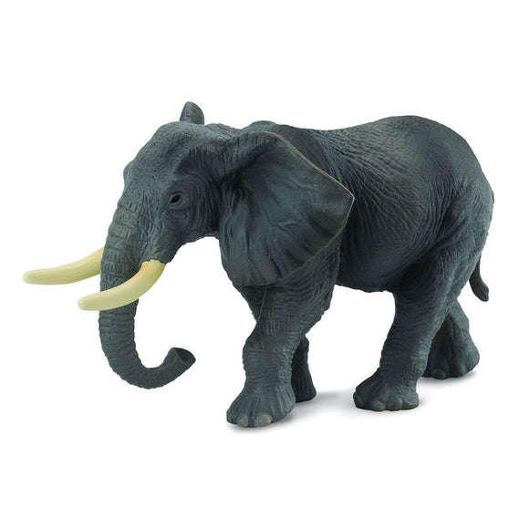 CollectA African Elephant - Wild Life - AnimalKingdoms.co.nz