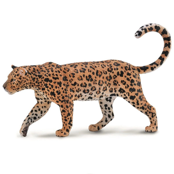 CollectA African Leopard - Wild Life - AnimalKingdoms.co.nz