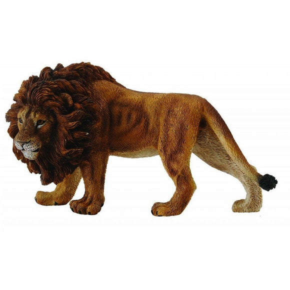 CollectA African Lion - Wild Life - AnimalKingdoms.co.nz