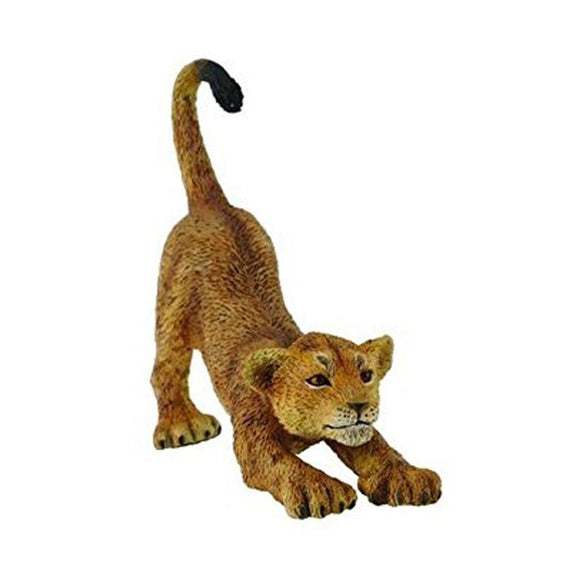 CollectA African Lion Cub Stretching - Wild Life - AnimalKingdoms.co.nz