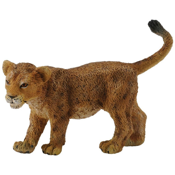 CollectA African Lion Cub Walking - Wild Life - AnimalKingdoms.co.nz