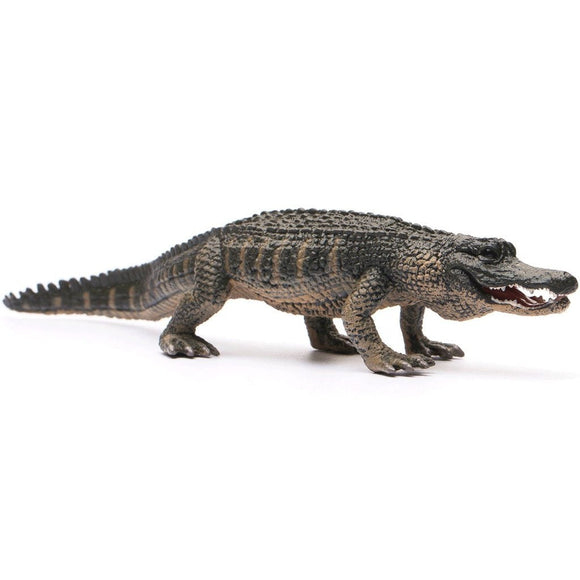 CollectA American Alligator - Wild Life - AnimalKingdoms.co.nz