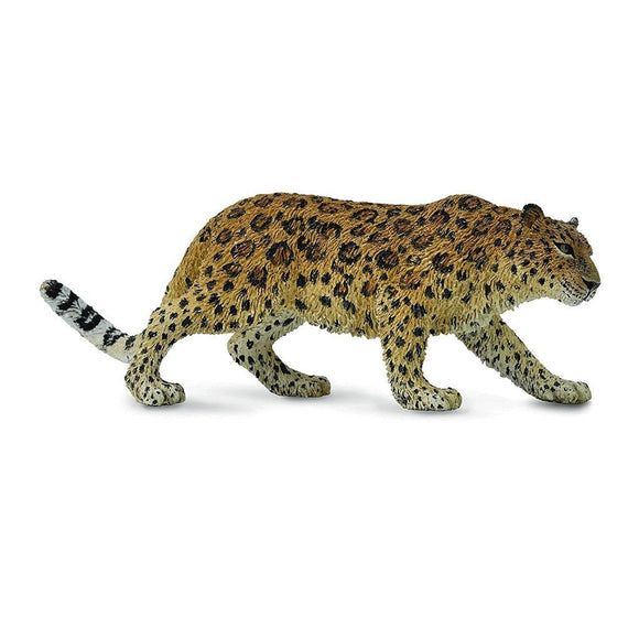 CollectA Amur Leopard - Wild Life - AnimalKingdoms.co.nz