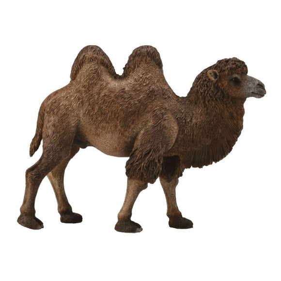 CollectA Bactrian Camel - Wild Life - AnimalKingdoms.co.nz