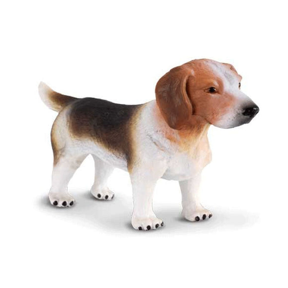 CollectA Beagle - Cats and Dogs - AnimalKingdoms.co.nz