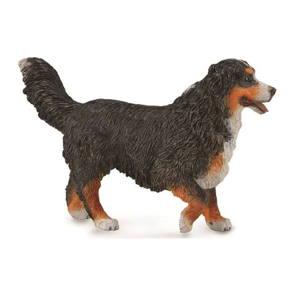 CollectA Bernese Mountain Dog-88801-Animal Kingdoms Toy Store
