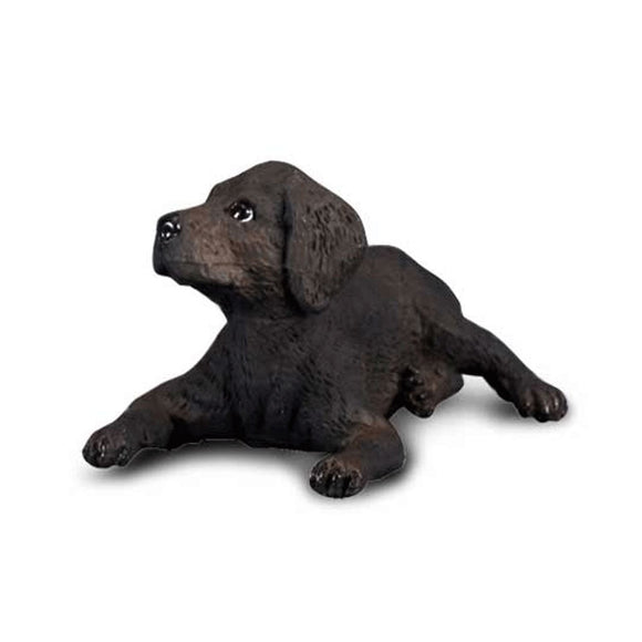CollectA Black Labrador Retriever Puppy - Cats and Dogs - AnimalKingdoms.co.nz