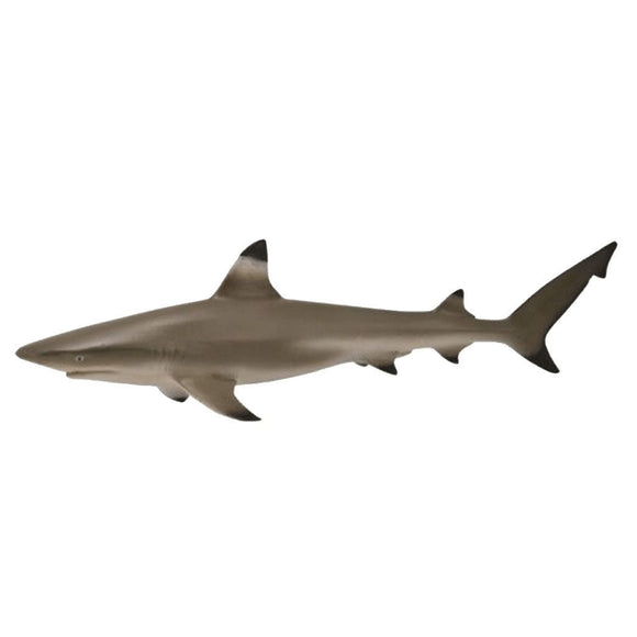 CollectA Blacktip Reef Shark-88726-Animal Kingdoms Toy Store