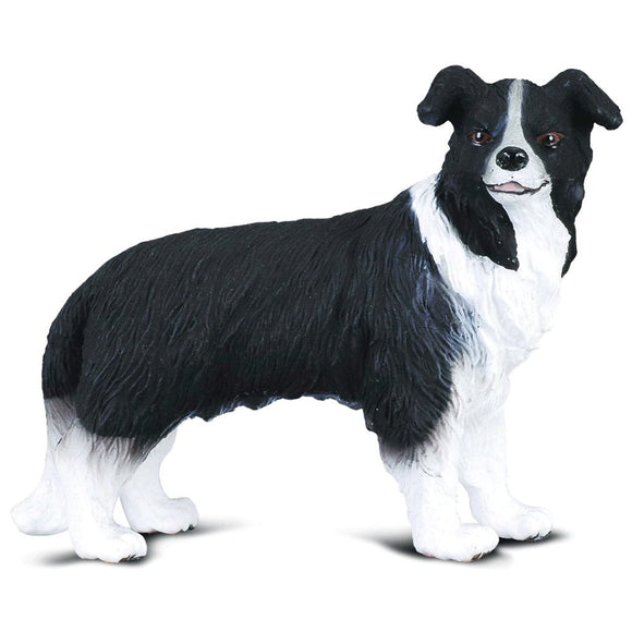 CollectA Border Collie - Cats and Dogs - AnimalKingdoms.co.nz