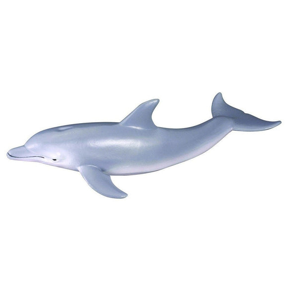CollectA Bottlenose Dolphin - AnimalKingdoms.co.nz