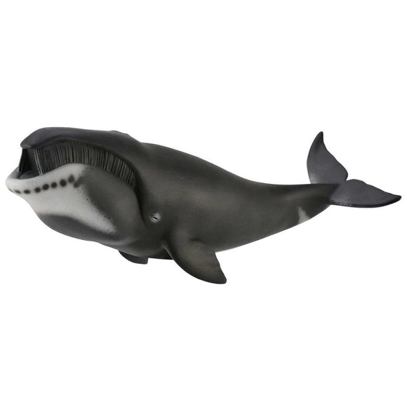 CollectA Bowhead Whale - Sealife - AnimalKingdoms.co.nz