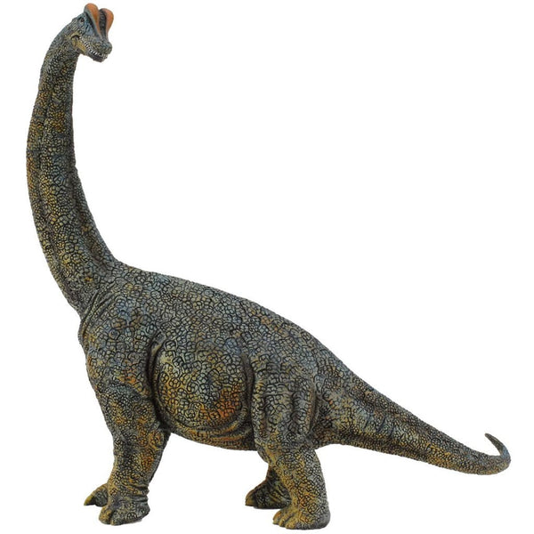 CollectA Brachiosaurus Deluxe Scale - AnimalKingdoms.co.nz