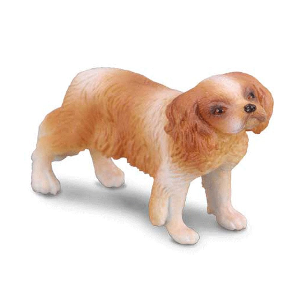 CollectA Cavalier King Charles Spaniel - AnimalKingdoms.co.nz