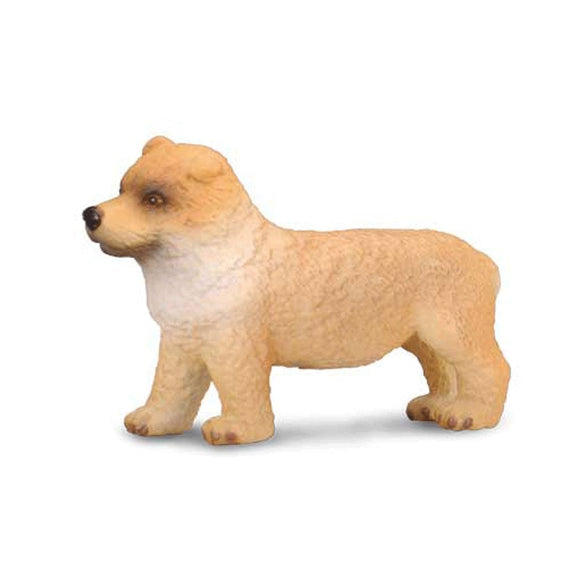 CollectA Chow Chow Puppy - Cats and Dogs - AnimalKingdoms.co.nz